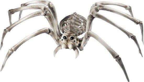 Edderkoppskjelett Festartikler